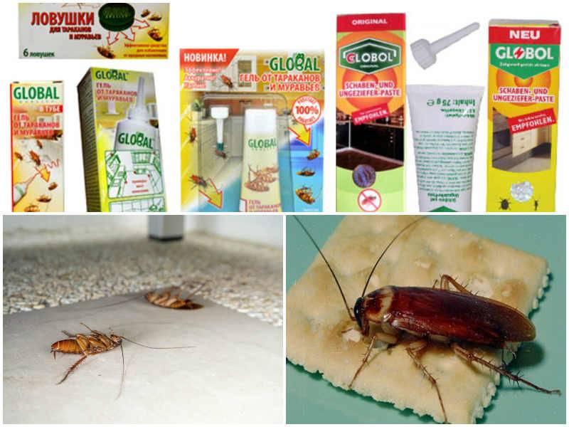 Механизм действия геля от тараканов глобал, особенности использования средства