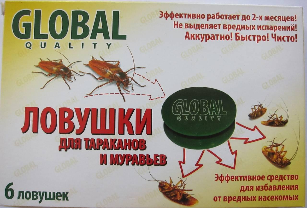 Как сделать ловушку для тараканов своими руками