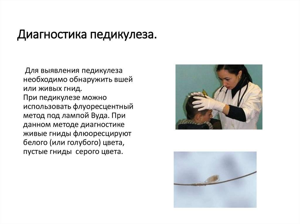 Санпин по педикулезу: профилактика паразитарных болезней на территории россии