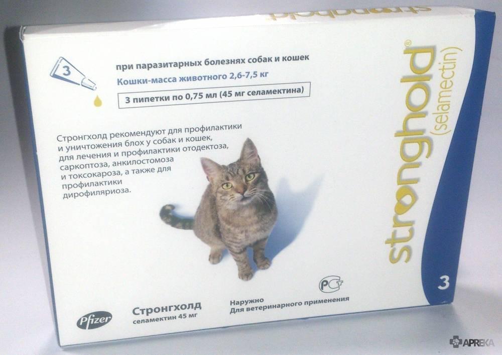 Стронгхолд для кошек: инструкция по применению, противопоказания, отзывы