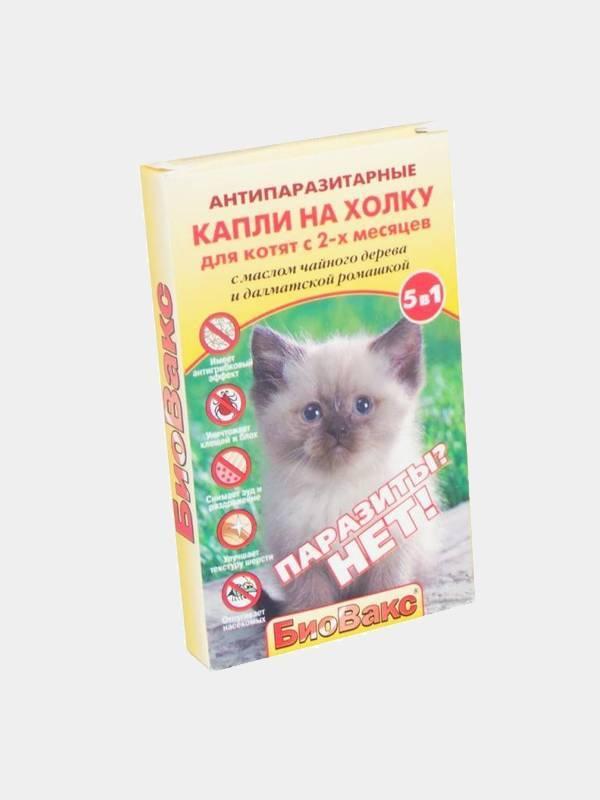 Капли для котят от блох: виды, применение, дозировка. эффективные средства от блох у котят от 3 месяцев