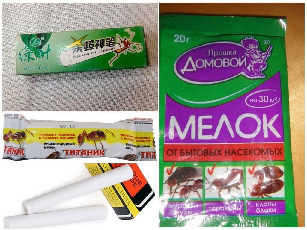 Карандаш от тараканов машенька: инструкция по применению и эффективность