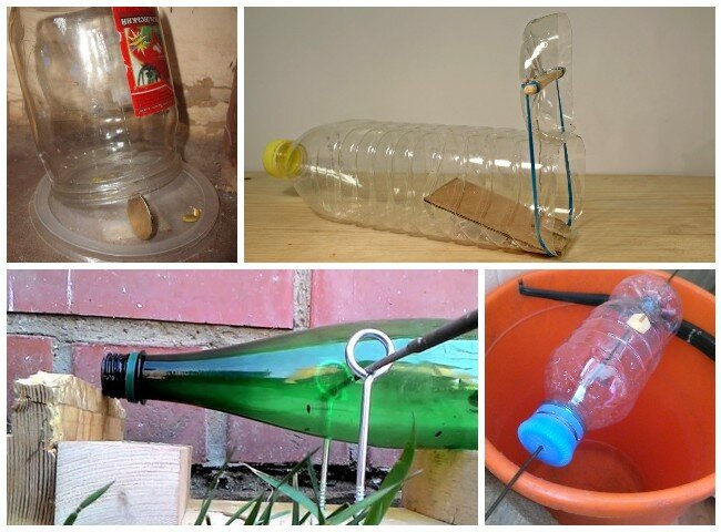 Ловушка для мышей из пластиковой бутылки своими руками в домашних условиях
