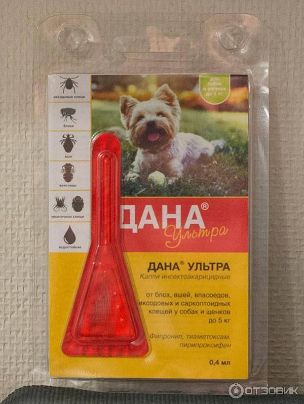 Препарат для домашних животных блох нет капли: инструкция по применению