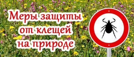 ✅ каких растений боится клещ - питомник46.рф