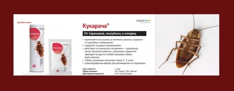 Средство от тараканов и клопов «кукарача» (50 гр): инструкция по использованию, купить в москве и спб