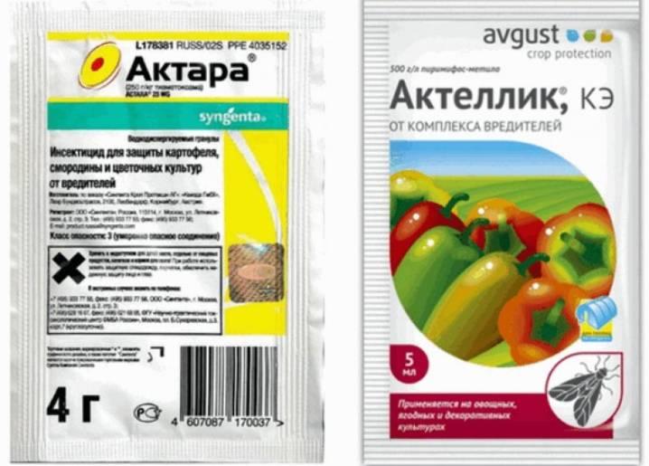 Как использовать актару для комнатных растений: инструкция по применению инсектицида, отзывы о препарате