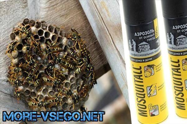 Аэрозоль москитол от ос и осиных гнезд