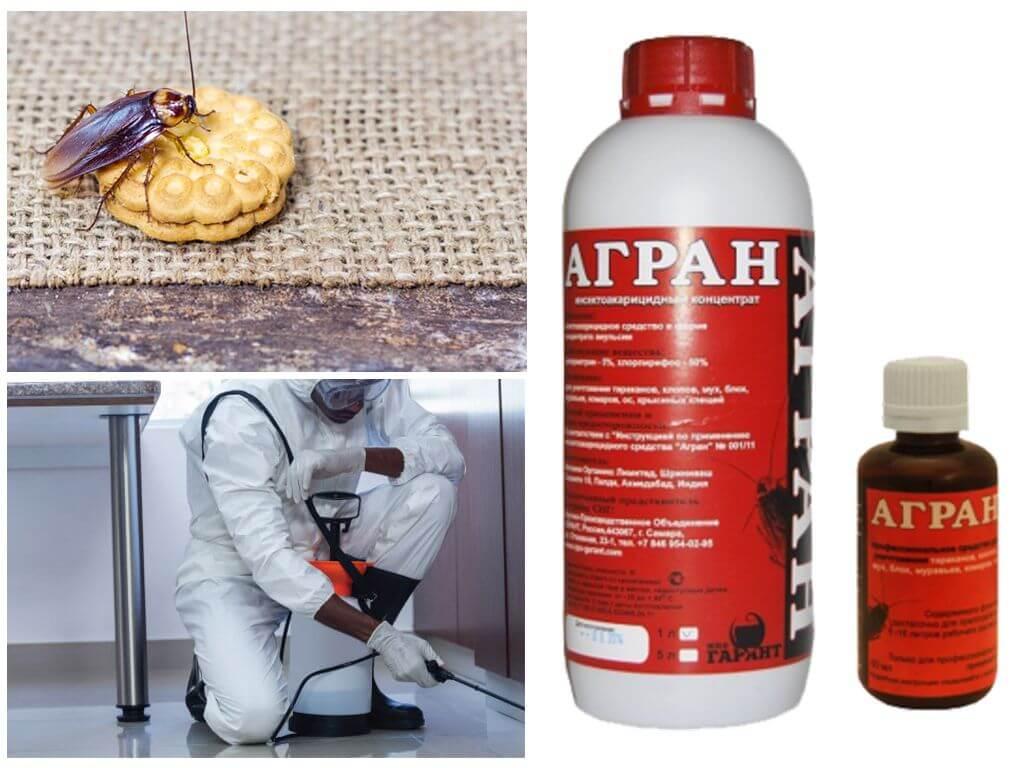 Агран от тараканов и клопов: инструкция по применению, отзывы