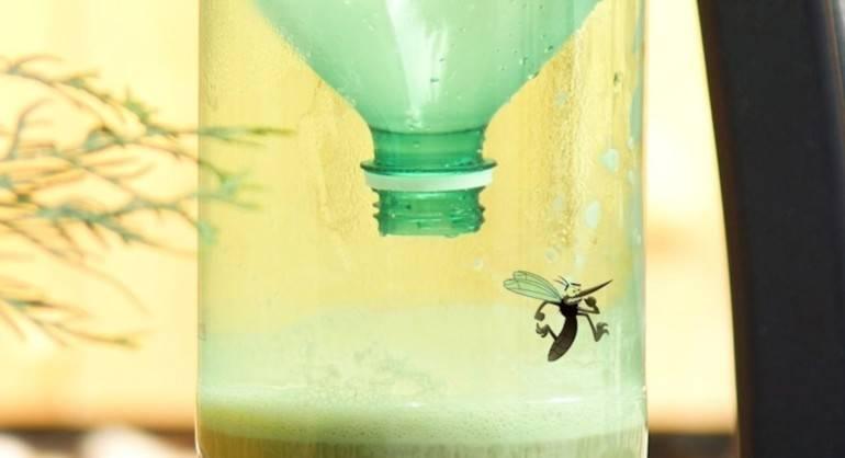 Ловушки для комаров на улице - как выбрать лучшую по характеристикам, виду и принципу действия