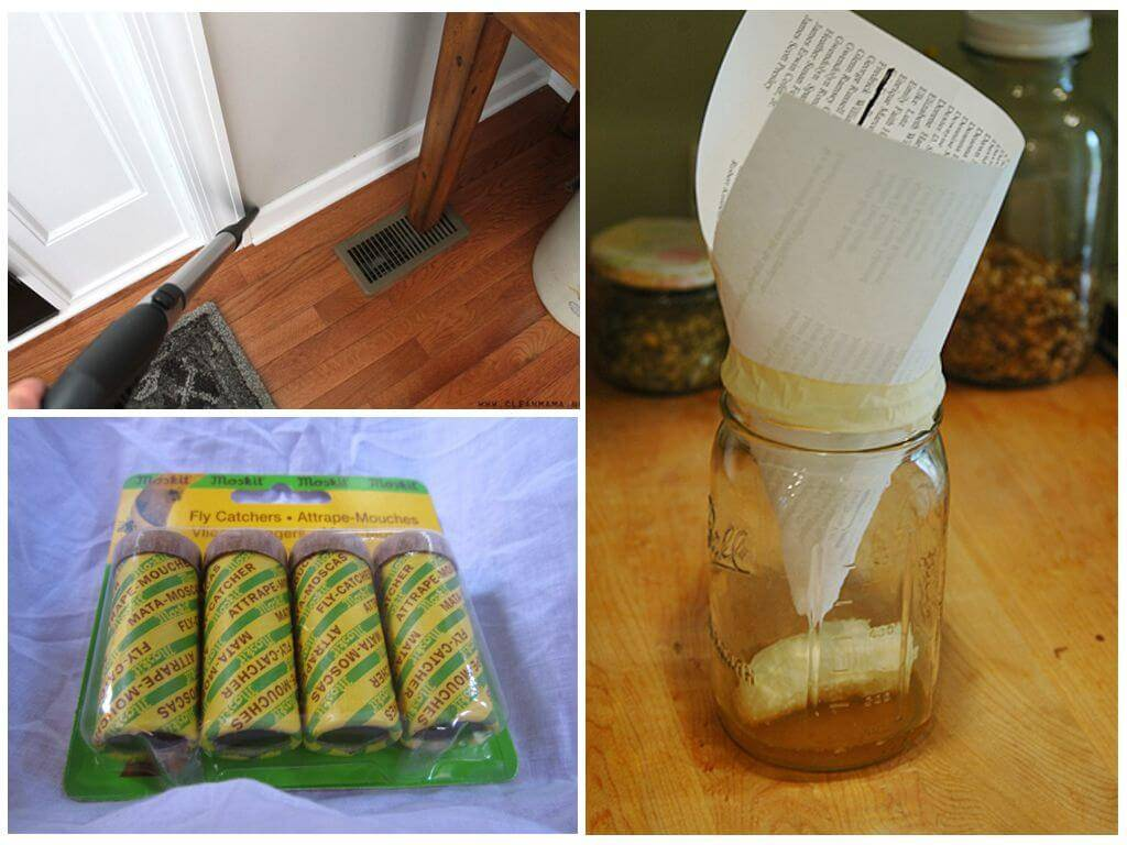 Как избавиться от мошек на кухне быстро: проверенные способы