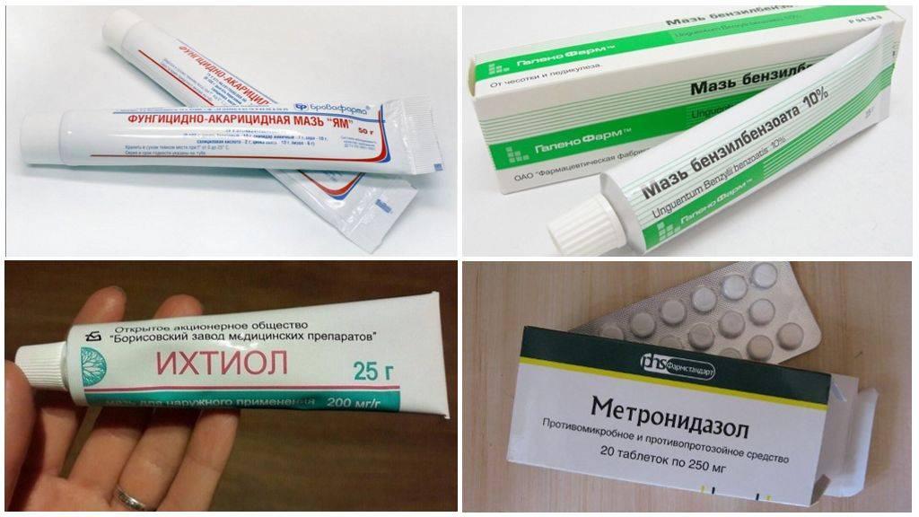 Народная медицина - основное лечение или вспомогательный метод?